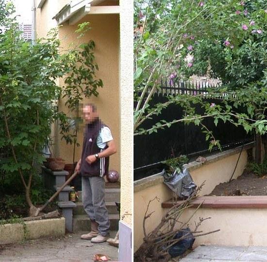 jardin petit cour terrasse patio