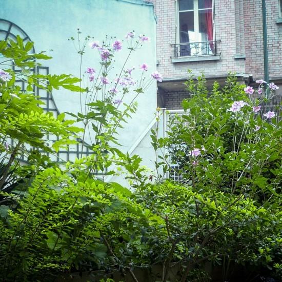 Copropri t jardin d 39 ombre jardin velours paysagiste for Jardinier paysagiste lyon